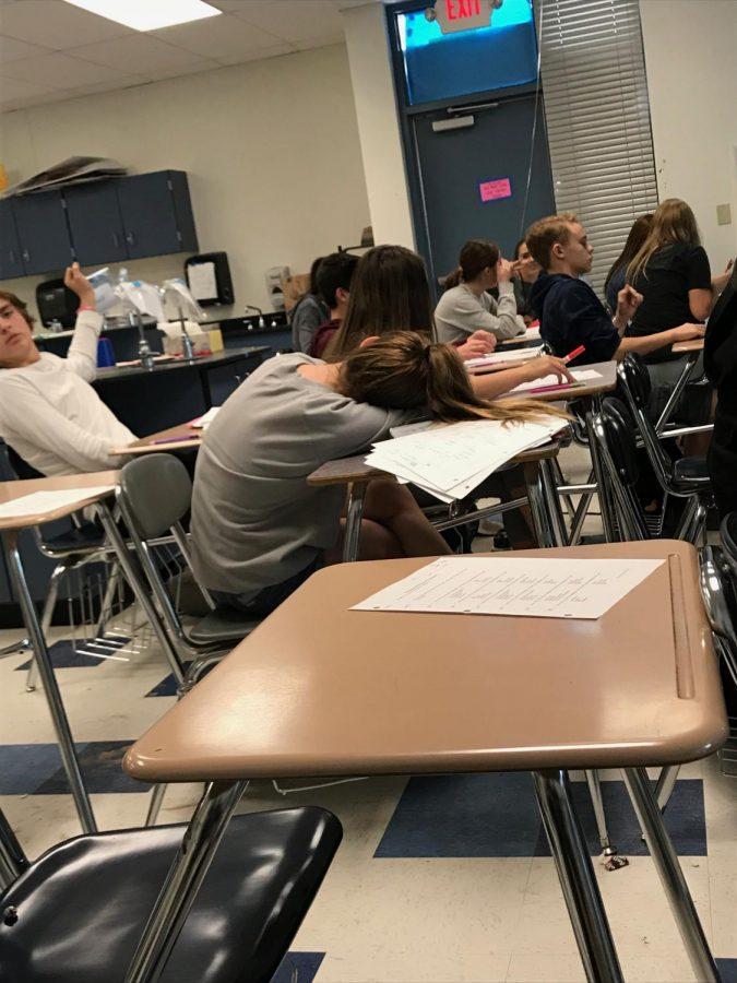 More students falling asleep in Wallise Lindvig's biology class